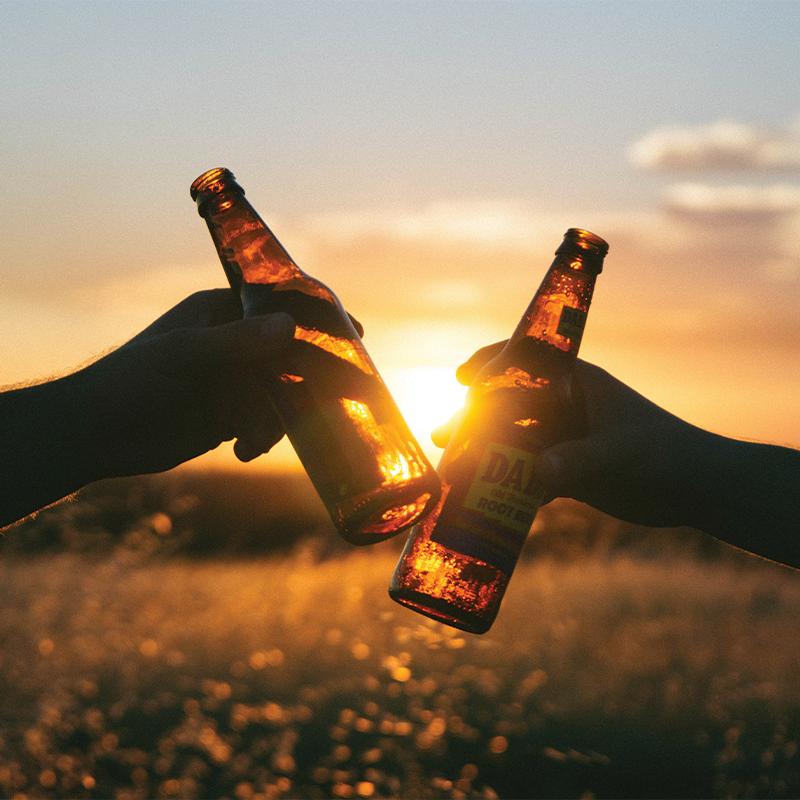Does Beer Increase Estrogen?